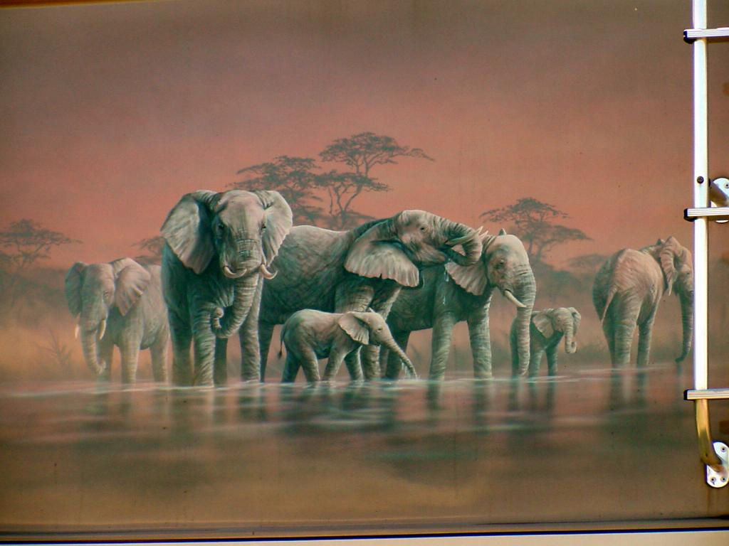 safari elephant murals